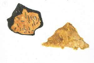 Chaga Chunks and Powder