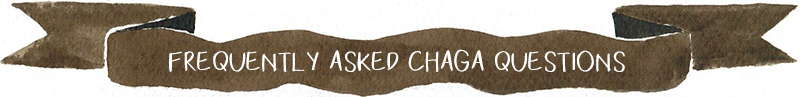 Frequently asked chaga questions