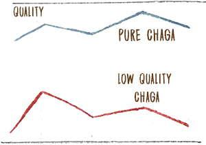 Low Quality Chaga
