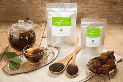 best Chaga Mushroom Extract