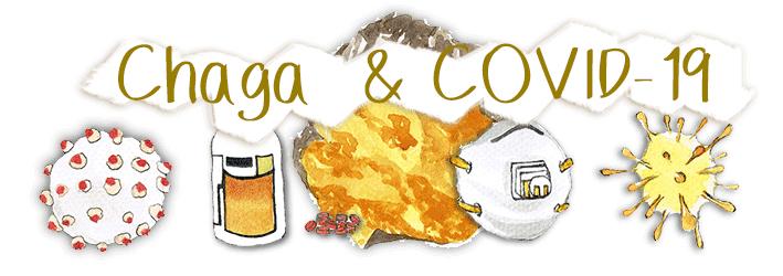 Chaga Mushroom & Coronavirus